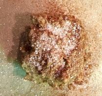 teacookie1